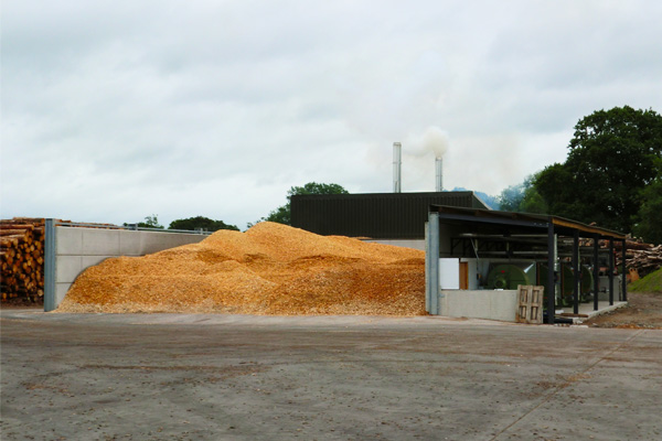 Wood chip for drying
